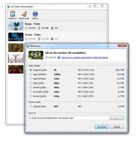 flv downloader free licence key