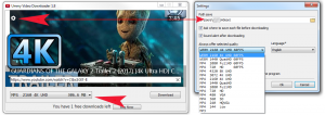 Ummy Video Downloader v1.10.3.0 Crack Download [Keygen + Keys]