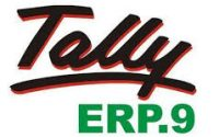 Tally.ERP 9 Crack 6.5.1 With Serial Key Free 2019 Download